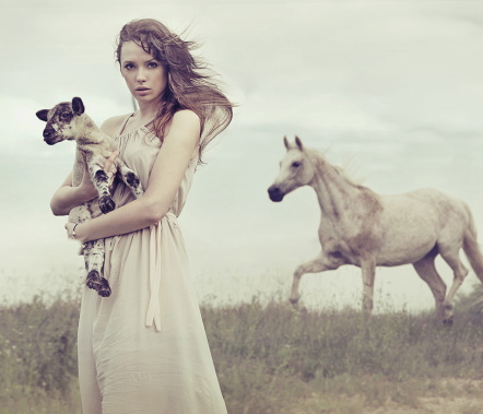 Lady and Horses
