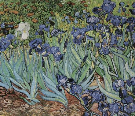 Vincent van Gogh XL I