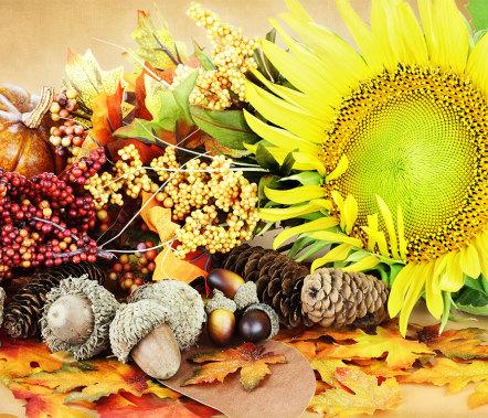 Autumnal Decor